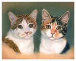 Cat Portrait of Pumpkin and Patch