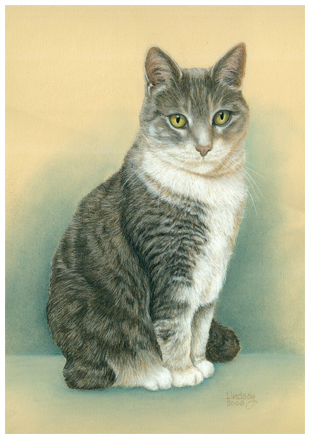 a_cat_portrait_of_lila