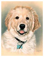 Dog Pet Portrait of Bocephus